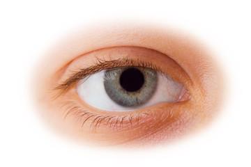 Woman eye isolated on white background