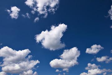 blue sky with cauliflower clouds