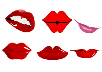 Six types of lips that can be used in various domains.