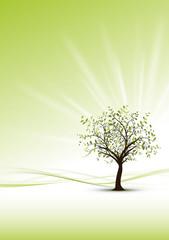 green modern background - sustainable developement