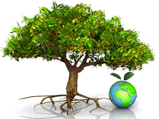 l'arbre et la terre