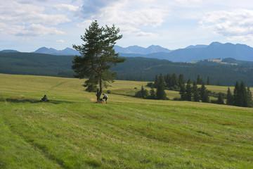 Under the Tatras