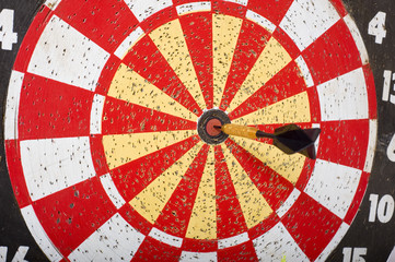 A black dark in the bulls eye of a dartboard.