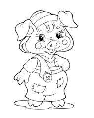 Illustration pig