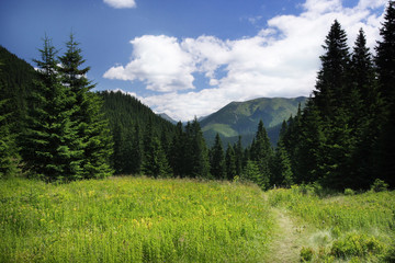 Landscape in Tatra Mountains
