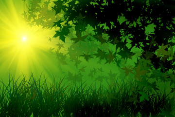 Green leafs and grass under the sun, illustration
