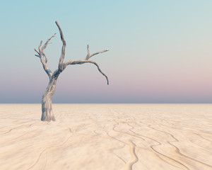 Tree on Horizon - A dry flat horizon background with an old tree
