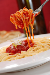Spaghetti [2]