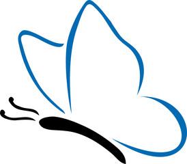 Dessin de papillon bleu