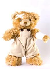 Ein verletzter Bär II