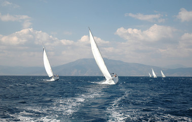 five yachts sail and they participate in the reggata