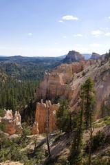 wild landscape in america