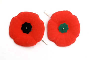 Remembrance Day Poppies - one Old (green) and one New (Black)..