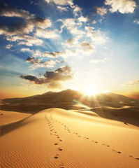 Foto auf AluDibond Wuste Sandig Desert