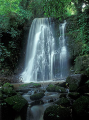 Small deep forest waterfall in sunny summer day