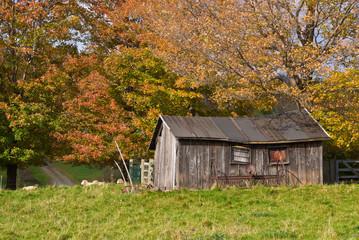 Dilapidated Small Barn