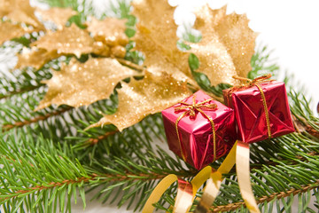 christmas decoration with golden holly