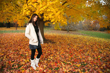 Wall Mural - Beautiful young woman in autumn park.