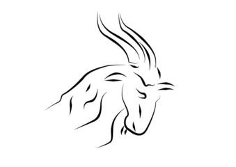 capricorno - zodiaco