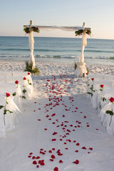 Beach Wedding Path Rose Pedals