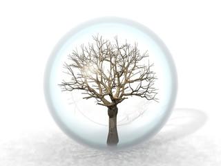 arbre mort en bulle
