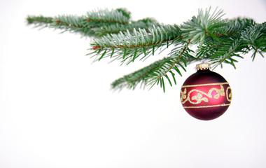 Tannenzweig nit Weihnachtskugel