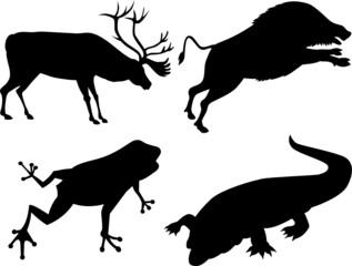 Wildlife silhouette
