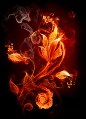 Printed roller blinds Flame Fire flower
