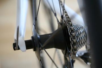 Kettenritzel bei einem Rennrad