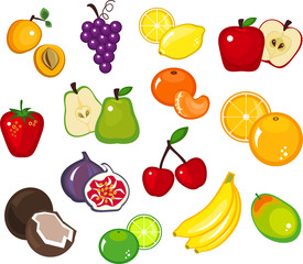 Various Fruits Part 1