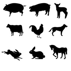 domestic animal silhouettes vector