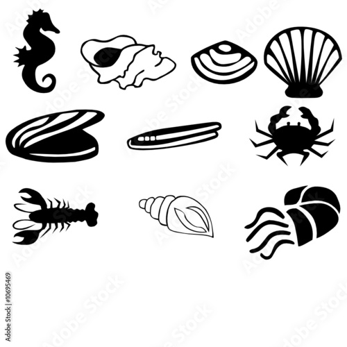 Sea horses, shell and lobster vector