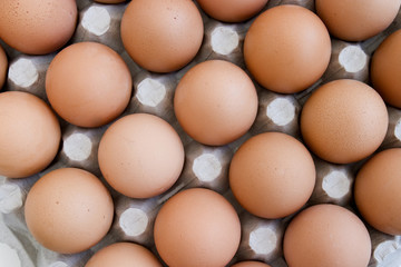 eggs new 14