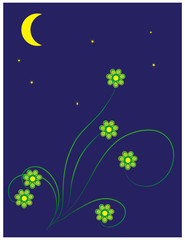 Summer moon night
