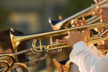 gold trombones Wall mural