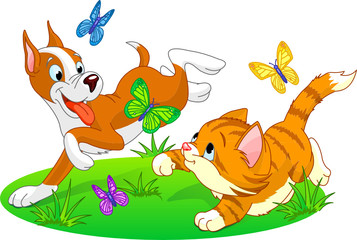 cat and dog running with butterflies