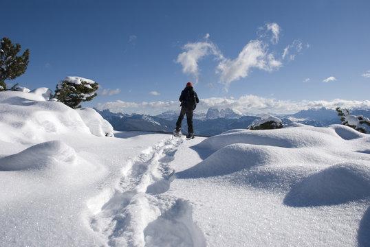 Auf Schneeschuhen durch die unberührte Winterlandschaft