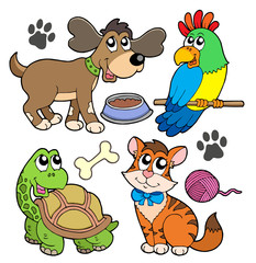 Deurstickers Katten Pet collection