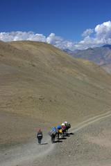 Fotobehang Fiets Ladakh - La caravane au col - 1