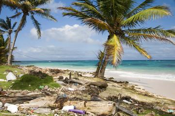 sallie peachie beach litter malecon north end corn island nicara