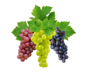 Three various grapes