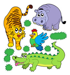 ZOO animals collection 5
