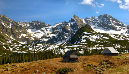 Fototapete - Shelters in Gasienicowa pasture valley in polish Tatra mountains