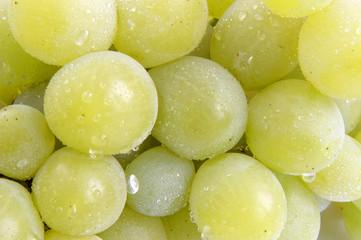 grapes 13
