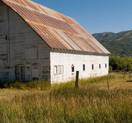 Old weathered barn in field.