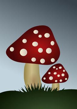 Amanite phalloïde