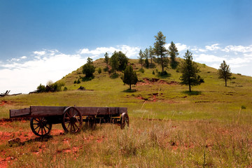 Wyoming Wagon
