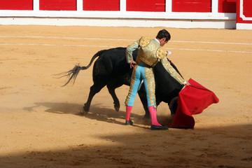 Tuinposter Stierenvechten Bullfighting