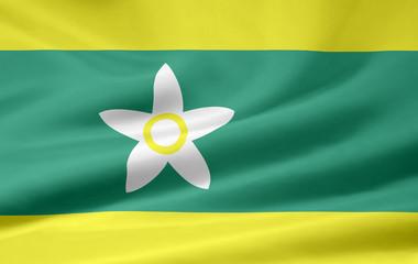 Flagge von Ehime - Japan