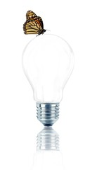 Light bulb with a butterfly